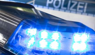 Die Polizei in Köln musste sich mit Hunderten randalierender Schüler beschäftigen. (Foto)