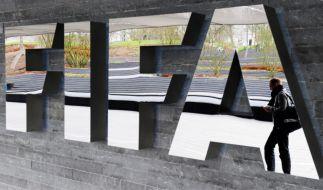 Korruptionsskandal: Die FIFA fordert mehrere zehn Millionen US-Doller als Entschädigung. (Foto)
