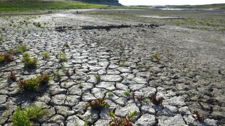 Durch die Globalisierung wirken sich Dürren, wie hier in Kalifornien, auch auf Mitteleuropa aus. (Foto)
