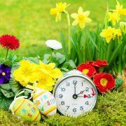 Uhren auf Sommerzeit umstellen, aber wie? Vor oder doch zurück? (Foto)