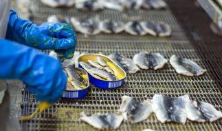 Rückruf bei Aldi Süd: Ein Lieferant hat ein falsches Mindesthaltbarkeitsdatum auf zwei Produkten angebracht. Es handelt sich um geräucherte Makrelen. (Foto)