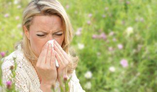 Allergiker kämpfen oft auch in den eigenen vier Wänden gegen die Pollen. (Foto)