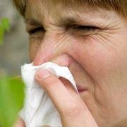 So gefährlich sind Pollen für Allergiker (Foto)