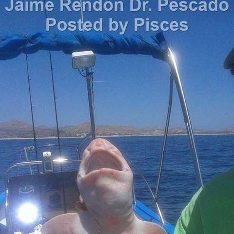 Was ist das??? Angler zieht Alien-Fisch aus dem Meer (Foto)