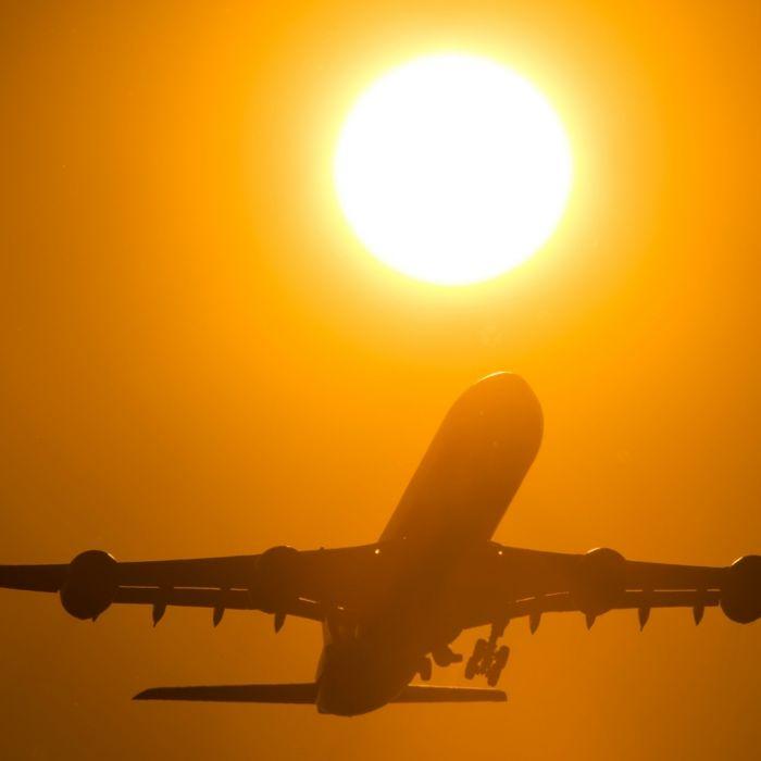 Auf DIESE 6 Lebensmittel sollten Sie vor dem Flug verzichten (Foto)
