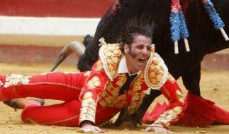 Der spanische Torero Juan Jose Padilla wird im August 2009 von einem Stier schwer verletzt. (Foto)