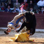 Salvador Ruano wurde am 04. April 2010 von seinem sechsten Stier aufgespießt.