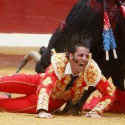 Während des Grande Semana Stierkampfes in Nordspanien zieht Juan Jose Padilla gegen seinen ersten Stier den Kürzeren.