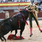 Israel Lancho wird von seinem zweiten Stier in der Las Ventas Stierkampfarena am 27. Mai 2009 aufgespießt.