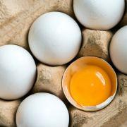 Salmonellen! Hersteller warnt vor Hühnereiern (Foto)