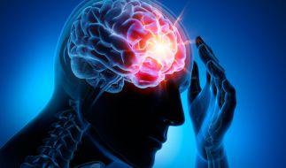 Durchblutungsstörungen im Gehirn können drastische Folgen haben. (Foto)