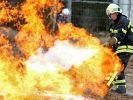 Weiterer Vierbeiner bei Feuer gestorben