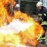 Mund-zu-Schnauze-Beatmung: Feuerwehrmänner retten Hund (Foto)