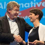 DAS denkt Deutschland über das AfD-Programm (Foto)
