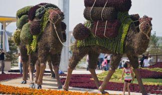 Die Türkei zwingt Deutschland zur Teilnahme an Expo 2016. (Foto)