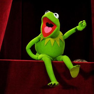3. Standbein? Frosch mit Riesen-Penis entdeckt (Foto)