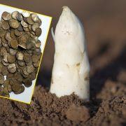 Im Spargel-Acker! Hobby-Archäologe findet Silberschatz (Foto)