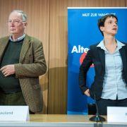 "Chaotische Zustände! AfD-Landtags-Vize schmeißt hin - Petry ""illoyal"" (Foto)"