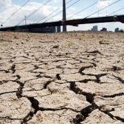 Felder und Flüsse trockneten aus, Boote lagen auf dem Trockenen, Waldbrände brachen aus. In Deutschland wurde eine Höchsttemperatur von 40,3 Grad gemessen.