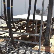 Affe löst landesweiten Stromausfall aus (Foto)