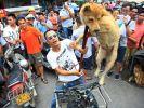 Mit lachenden Gesichtern halten die Festival-Besucher das Geschehen mit der Kamera fest. Einer der Händler zeigt seine Ware. (Foto)