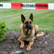 Polizist quält Polizei-Hund zu Tode - Suspendiert! (Foto)