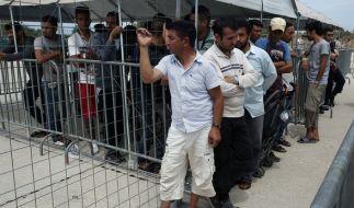 Nicht alle Flüchtlinge sind mit ihrem neuen Leben in Europa zufrieden. (Foto)