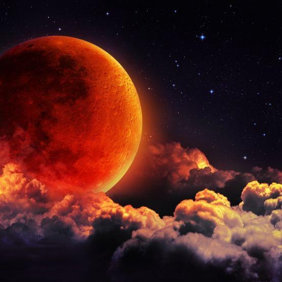 Erdbeermond! Roter Mond erhellt die kürzeste Nacht des Jahres (Foto)