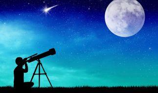 Der Sternschnuppenstrom der Perseiden verzaubert die Nächte im Juli 2016. (Foto)