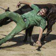 Hier wird ein Teilnehmer beinahe von einem Stier aufgespießt.