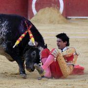 Mitten durchs Herz! Stier tötet spanischen Torero (Foto)
