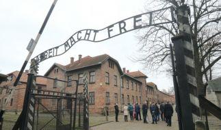 Dem Personal der Gedenkstätte Auschwitz-Birkenau fielen bislang nach eigenen Angaben keine Besucher auf, die mit dem Smartphone Monster gejagt hätten. (Foto)