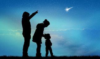 Bis zu 160 Sternschnuppen werden in diesem Jahr pro Stunde im Perseiden-Maximum erwartet. (Foto)
