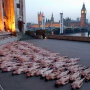 April 2003 in London: Spencer Tunick positioniert seine Nackten bei Dämmerung vor der Themse.