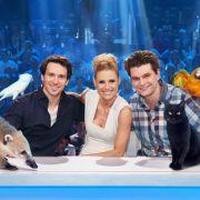 Unglaublich! Das sind die talentiertesten Haustiere der Welt (Foto)