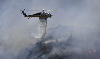 Eine paar Blätter Klopapier verursachten einen riesigen Waldbrand. (Foto)