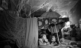 """In """"Das Spinnwebhaus"""" erzählt Mara Eibl-Eibesfeldt die Geschichte dreier Kinder in stimmungsvollem Schwarz-Weiß. (Foto)"""