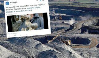 Russische Bergleute entdecken eine mumifizierte Kreatur in der Mine. (Foto)