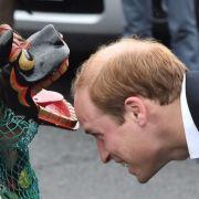 Und deshalb hat Prinz William auch absolut keinen Grund, den Kopf in den...zu stecken!