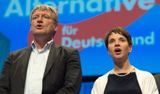 Neuer Ärger für Frauke Petry und Co. (Foto)
