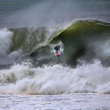 Horror-Attacke! Hai reißt Surfer Arm ab (Foto)