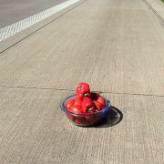 Schüssel voller Paprika auf Autobahn verblüfft die Polizei (Foto)