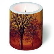 Wer seine Kerzensammlung für die langen Herbstabende vergrößern möchte, kommt an diesem hübschen Stück nicht vorbei. Die 10 Zentimeter hohe Kerze mit stimmungsvollem Herbstmotiv ist ein wahrer Hingucker und sorgt für unverwechselbare Stimmung.