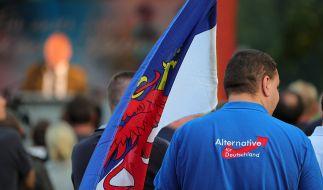 Die AfD könnte bei der Wahl in Mecklenburg-Vorpommern ein Rekordergebnis erzielen. (Foto)