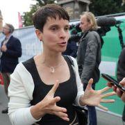 Merkel abgehängt! AfD wird heimlicher Sieger - SPD gewinnt (Foto)