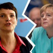 Mega-Erfolg für die AfD! Merkel übernimmt Verantwortung (Foto)