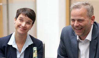 Die AfD wurde zweitstärkste Kraft in Meck-Pomm: Der Grünen-Politiker Daniel Mack hat sich nach der Landtagswahl in Mecklenburg-Vorpommern über den Wahlausgang auf Twitter Luft gemacht. (Foto)