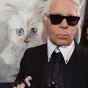 Seine große Liebe: Karl Lagerfeld Katze Chaupette hat sogar einen eigenen Twitter-Account.