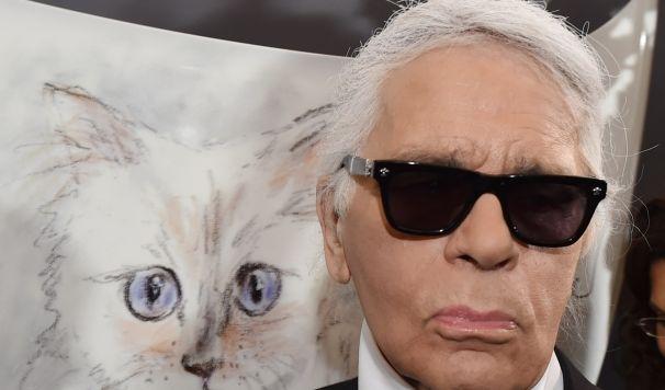 Seine große Liebe: Karl Lagerfeld Katze Chaupette hat sogar einen eigenen Twitter-Account. (Foto)
