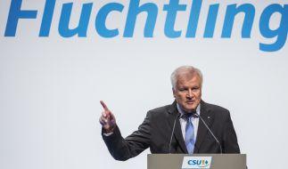 Horst Seehofer. (Foto)